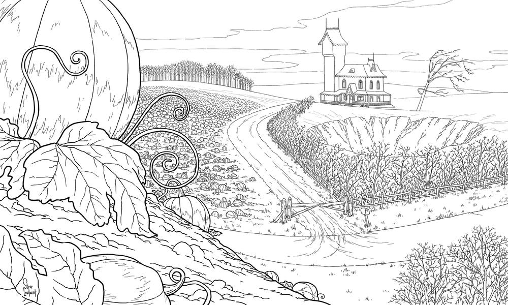 Drawn pumpkin pumpkin patch Line  Art Animation —