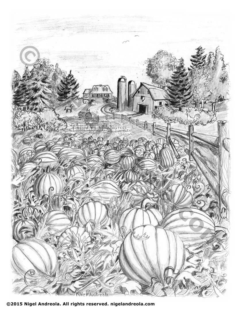 Drawn pumpkin pumpkin patch Book Illustration Pumpkinpatch