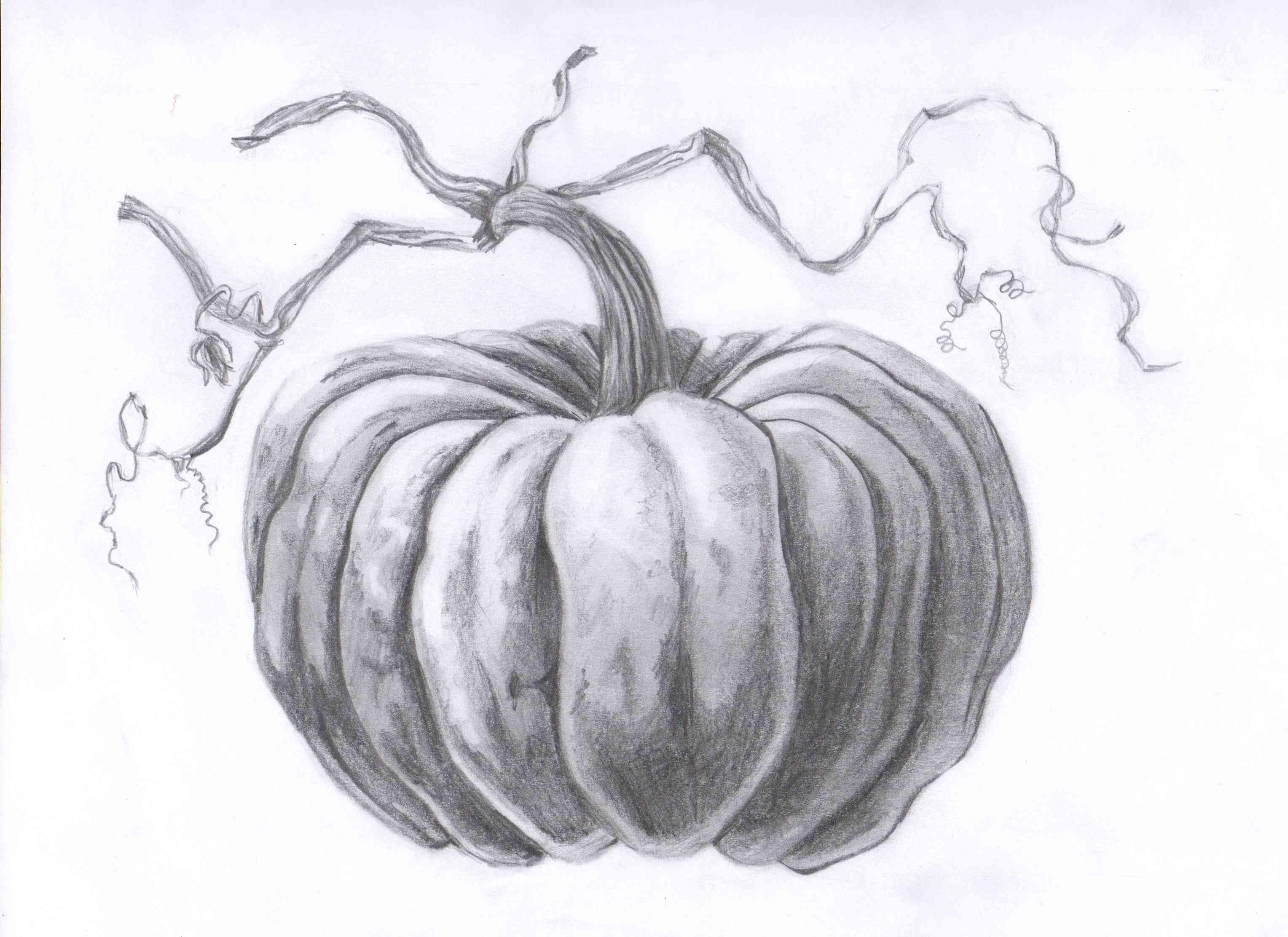 Drawn pumpkin realistic Pinterest Pumpkins Life on best