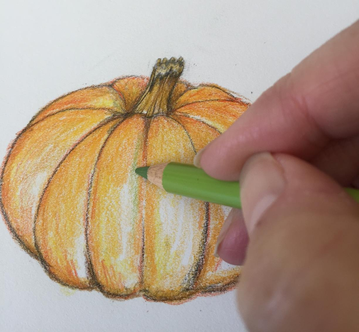 Drawn pumpkin realistic Used look lines some Slightly