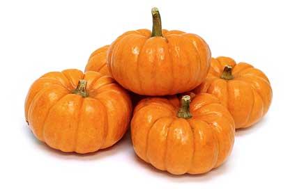 Drawn pumpkin realistic Pumpkin curved in looking a