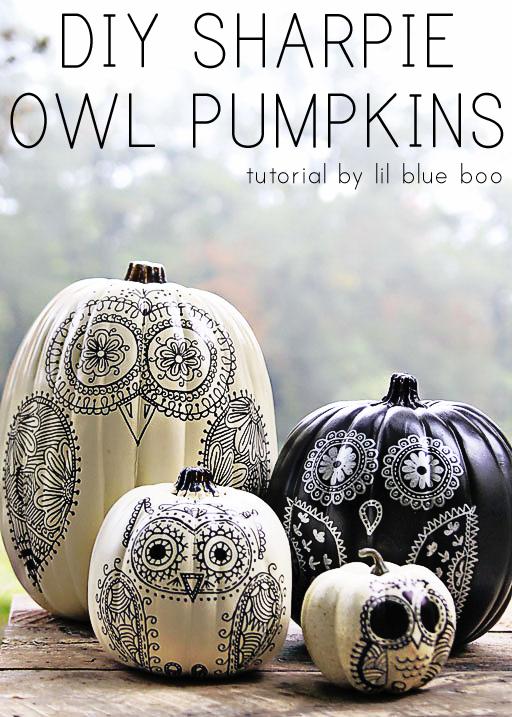 Drawn pumpkin sharpie Sharpie to Owl Make