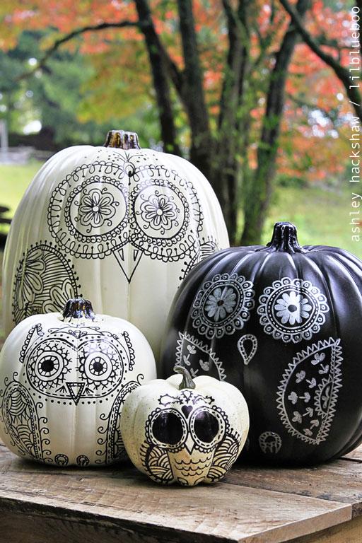 Drawn pumpkin sharpie Make ideas pumpkin to owl