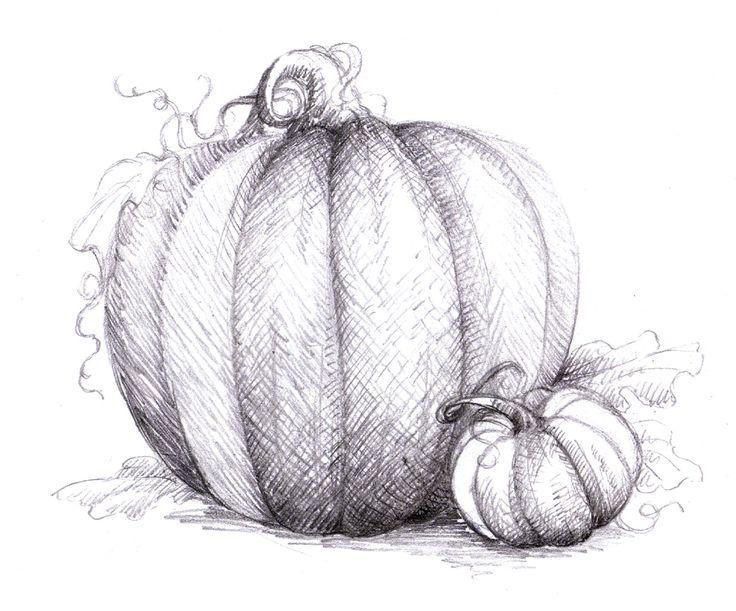 Drawn pumpkin squash Cross are best draw Pinterest
