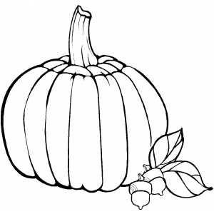 Drawn pumpkin thanksgiving Best Pinterest Pumpkin page net]