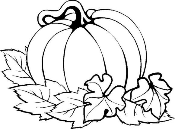 Drawn pumpkin thanksgiving Drawings on Coloring Thanksgiving Easy