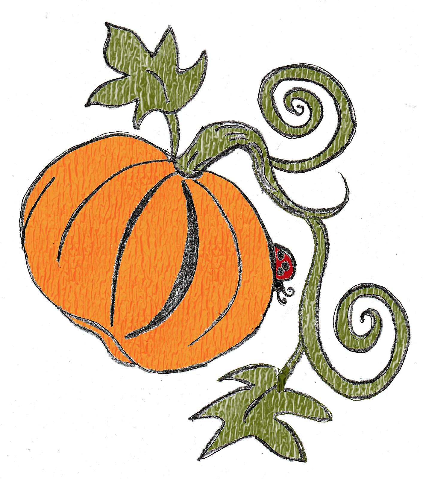 Drawn pumpkin vine And large pumpkin bug the