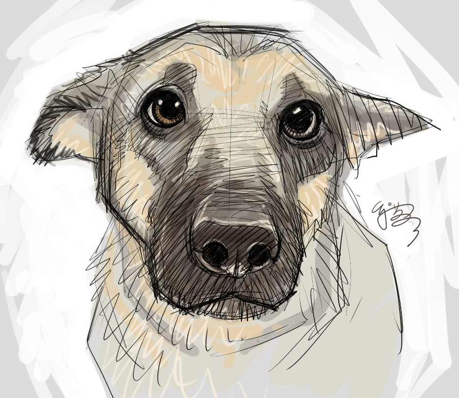 Drawn puppy big eye On more EJ Puppy DeviantArt