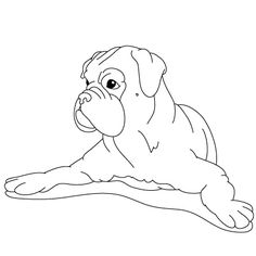 Drawn puppy boxer Fun Dog: dogs Lessons to