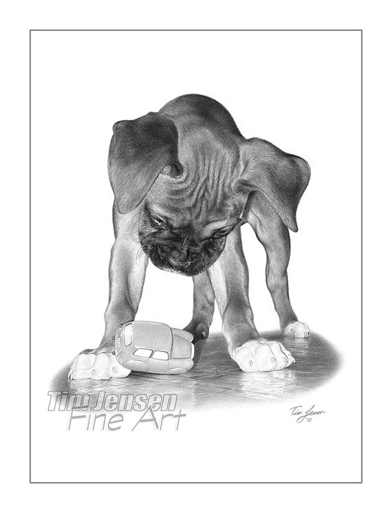 Drawn puppy boxer Pencil toy toy titled Print