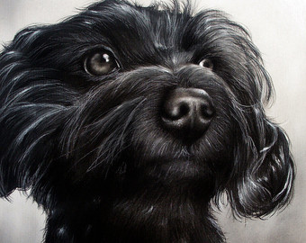 Drawn puppy charcoal Canine Etsy Drawing on portrait