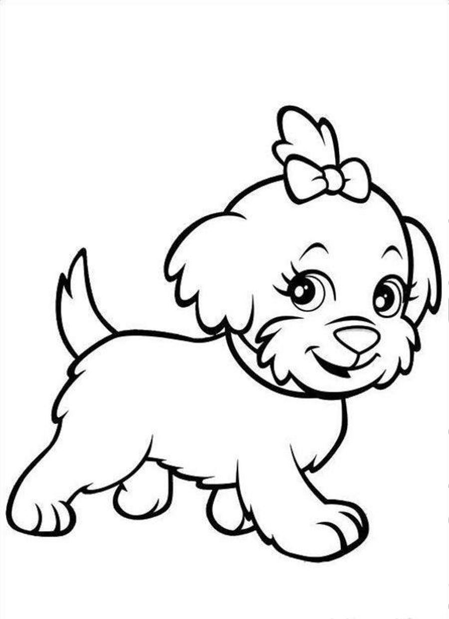 Drawn puppy color Coloring coloring Images2fun Pages puppy