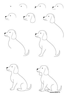 Drawn puppy medium level Desenho # Dogs Publications how