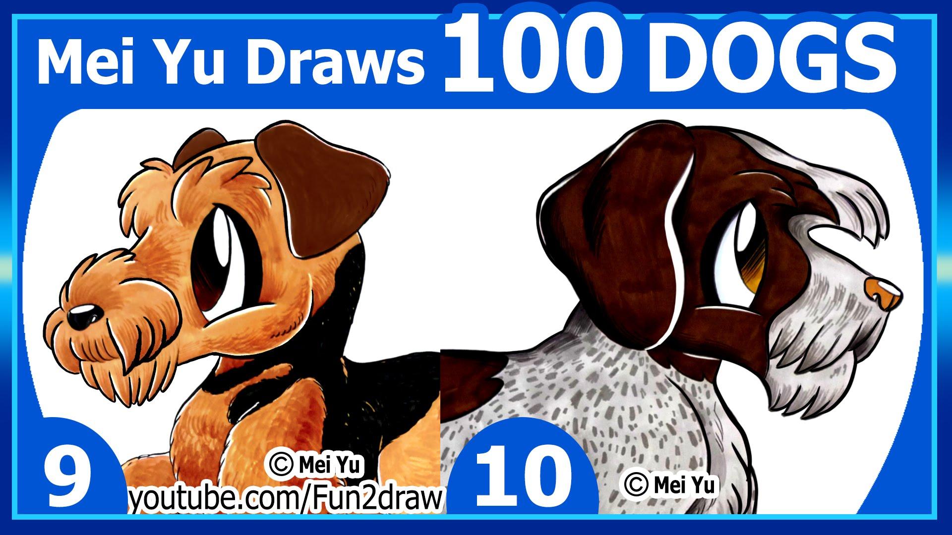 Drawn puppy mei yu Drawing + 100 Mei Dogs