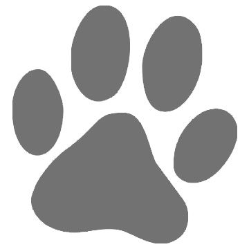 Drawn puppy paw print And pawprint Google on best