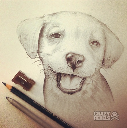 Drawn puppy puppie This puppies on more images
