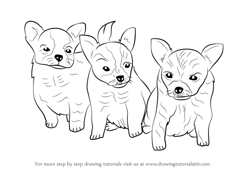 Drawn puppy puppie Tutorials to by How Learn