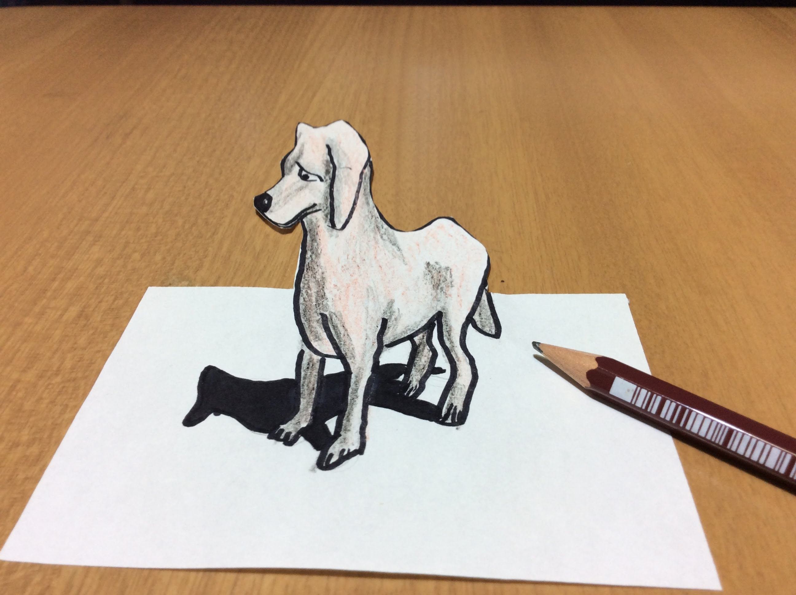 Drawn puppy real dog Puppy Time  Dog Lapse