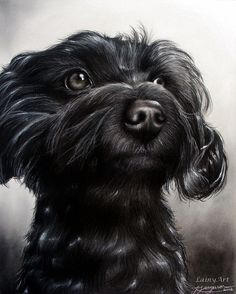 Drawn puppy realistic Golfiscool Drawing Realistic Dog Charcoal