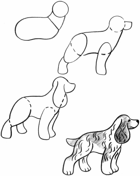 Drawn puppy small Drawing step step drawing Puppies