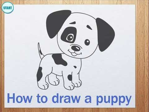 Drawn puppy small dog  puppy draw How a