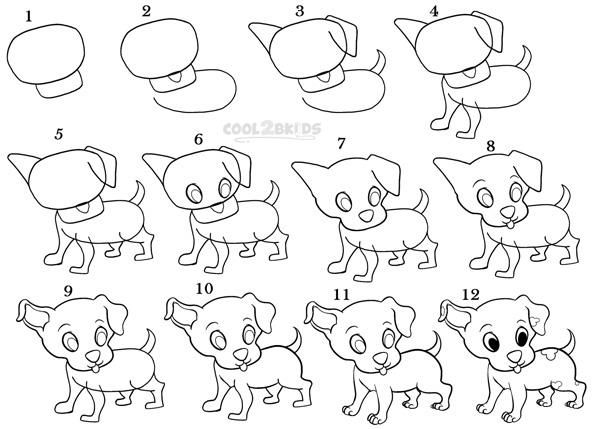 Drawn puppy step by step Pictures) (Step Step How Puppy