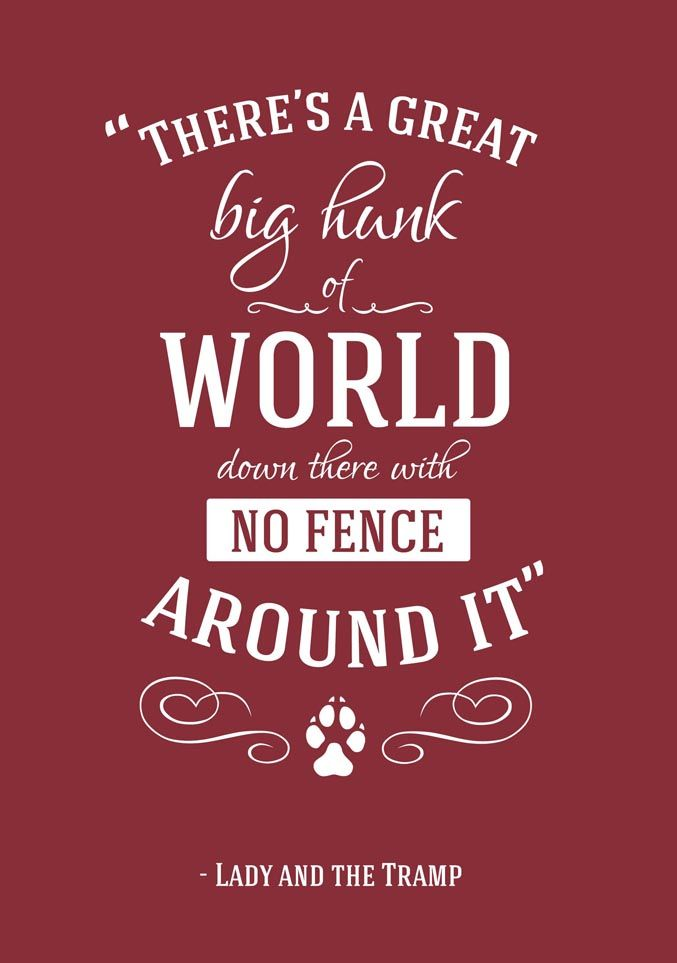 Drawn quote disney movie Travel tramp ideas and Quotes