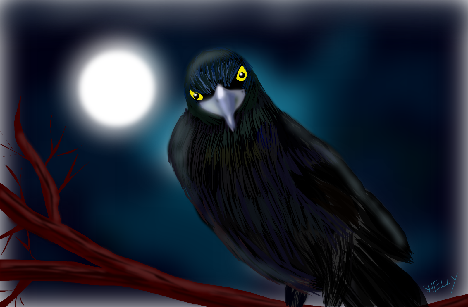 Drawn quoth Unbroken drawings Quoth Raven »