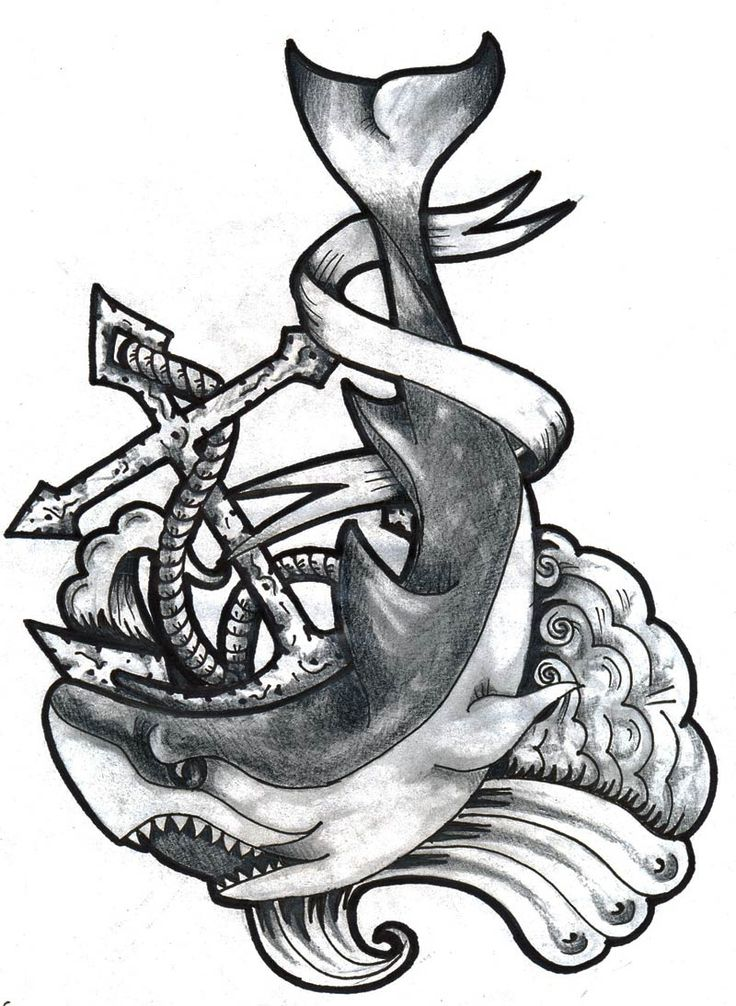 Drawn quoth anchor Anchor about & tattoo Shark