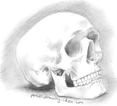 Drawn quoth pencil Drawing skull Draw a Steps