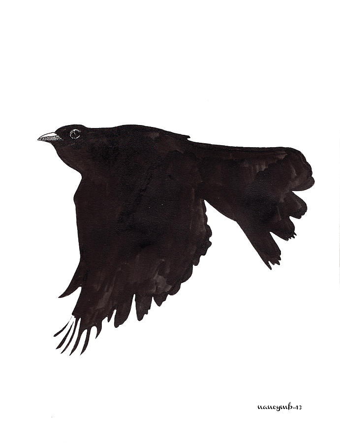 Drawn quoth saturday Quoth Raven Drawing Mergybrower Drawing