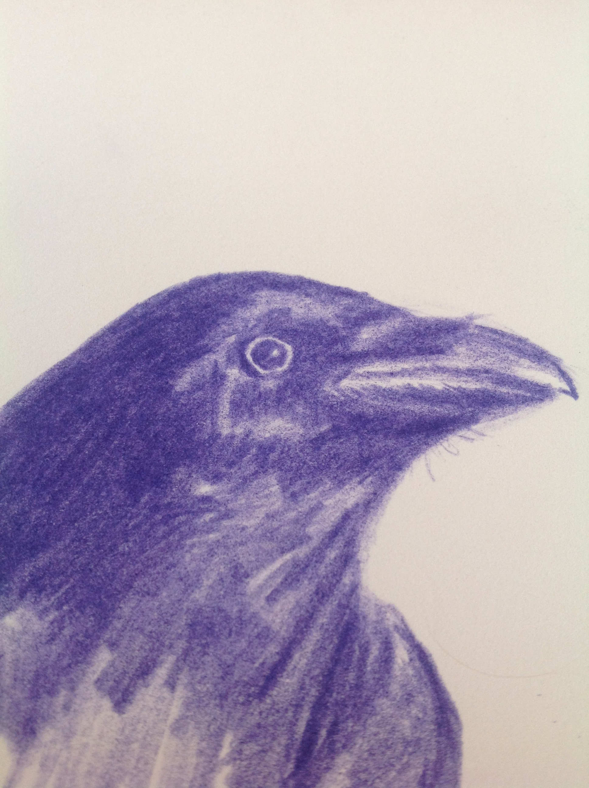Drawn quoth sketch Upways Raven day Create every