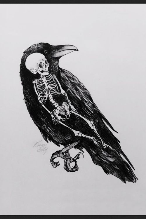 Drawn raven poem drawing Images The Raven Best LD