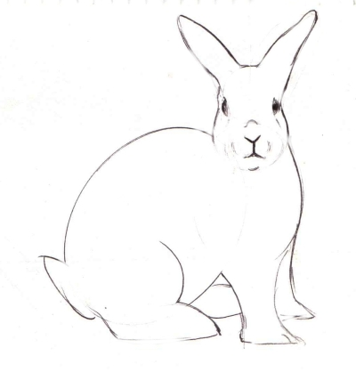 Drawn rabbit A to Draw Draw Steps