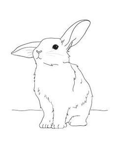 Drawn rabbid color Bunny card and Coloring