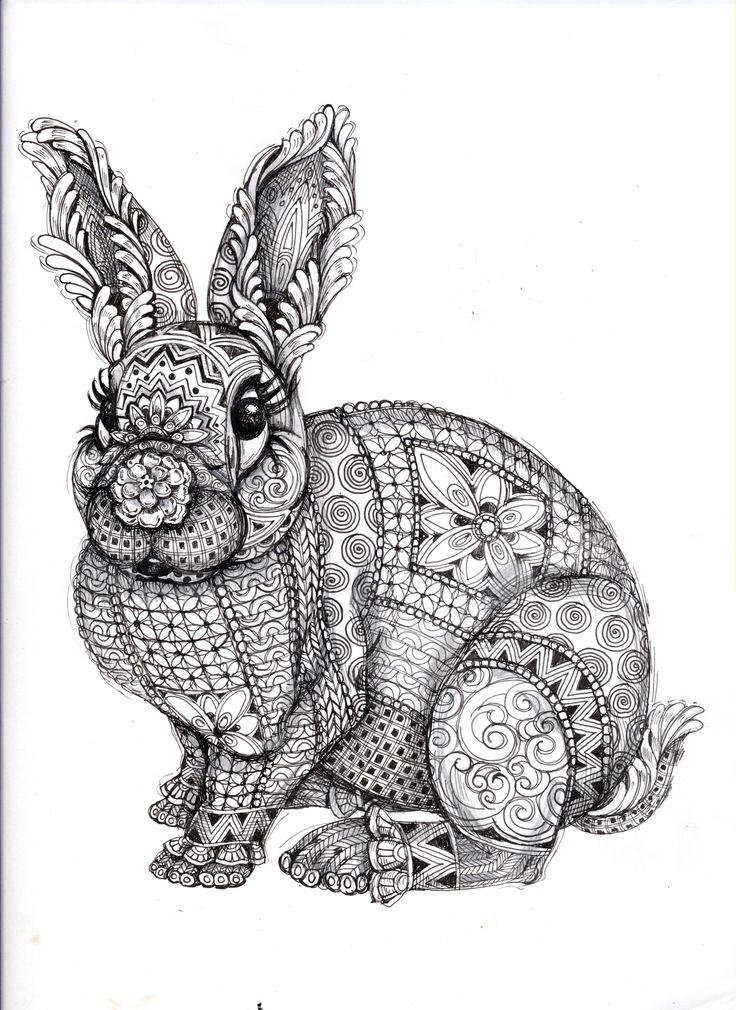Drawn rabbid color Adults 270 coloring for on