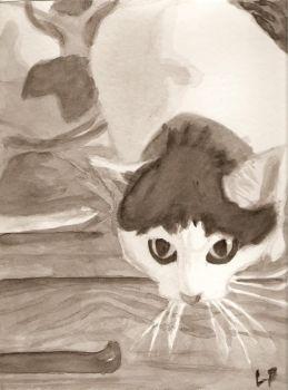 Drawn rabbid fox Pounce Ready DeviantArt Fox to