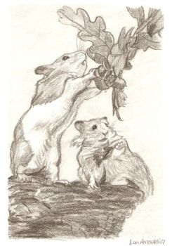 Drawn rabbid fox By Storytelling Rabid Hamster Fox