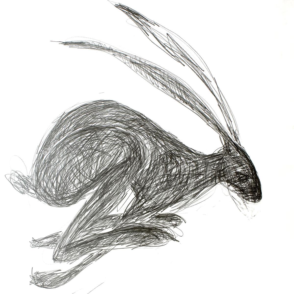 Drawn rabbid hare Hall 'Running Worrall Julieanne Hall