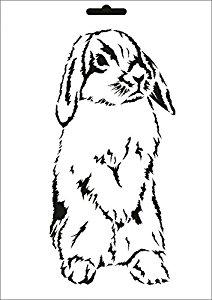 Drawn rabbid mammal W Design com: A4 UMR