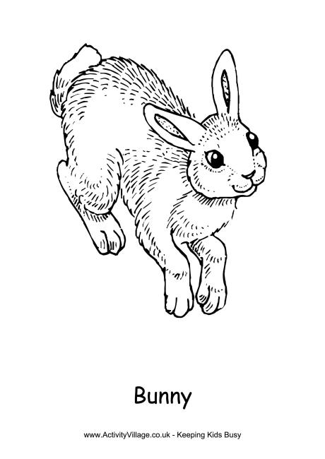 Drawn rabbid rabbit hopping Bunny Pages Page Rabbit Colouring