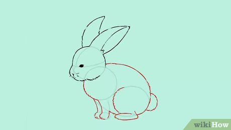 Drawn rabbit 5 year old How a Steps (with Bunny: