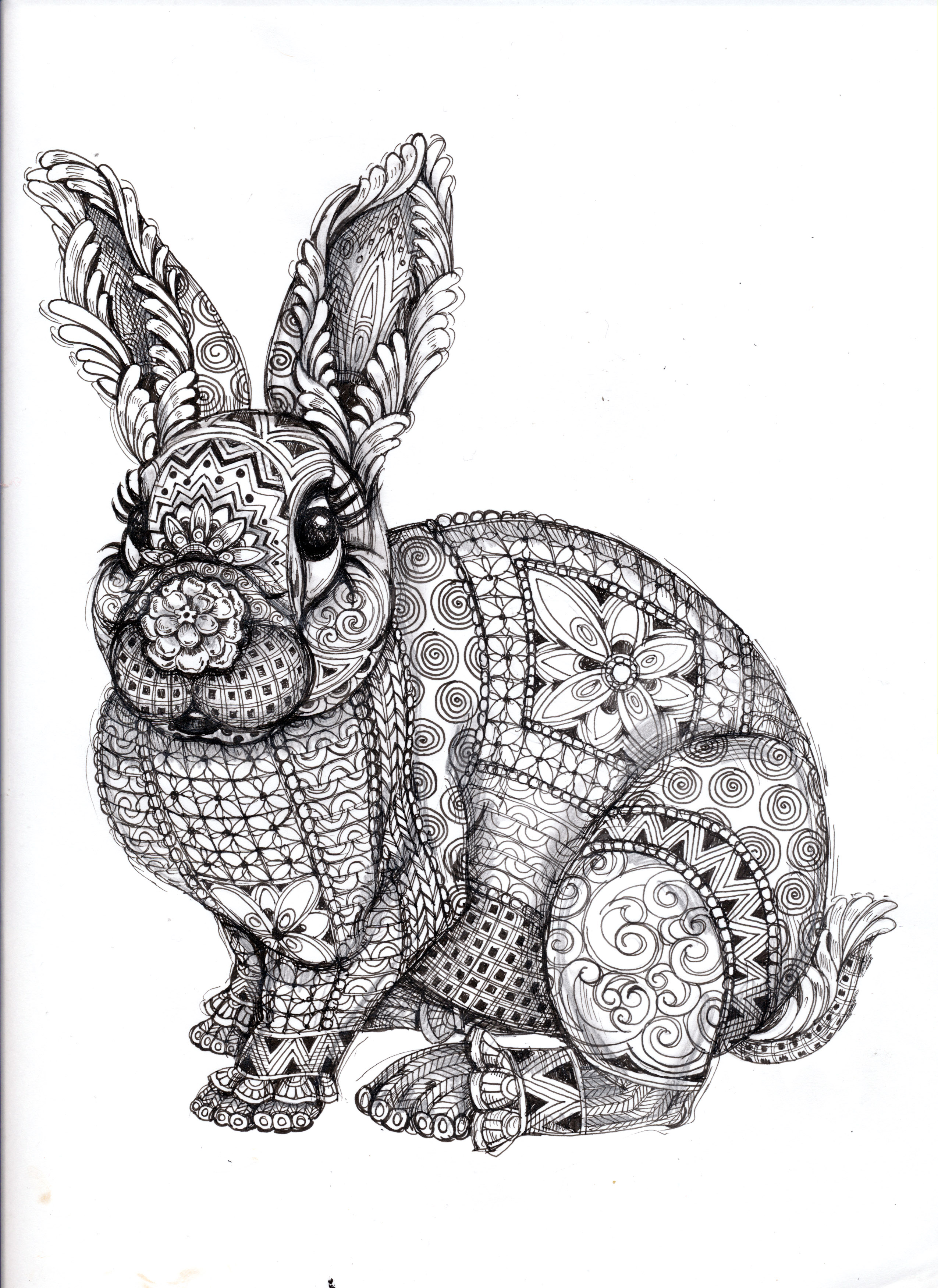 Drawn rabbit abstract Pages! Find more and on