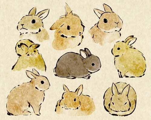 Drawn rabbit adorable bunny Art Best bunny W ideas