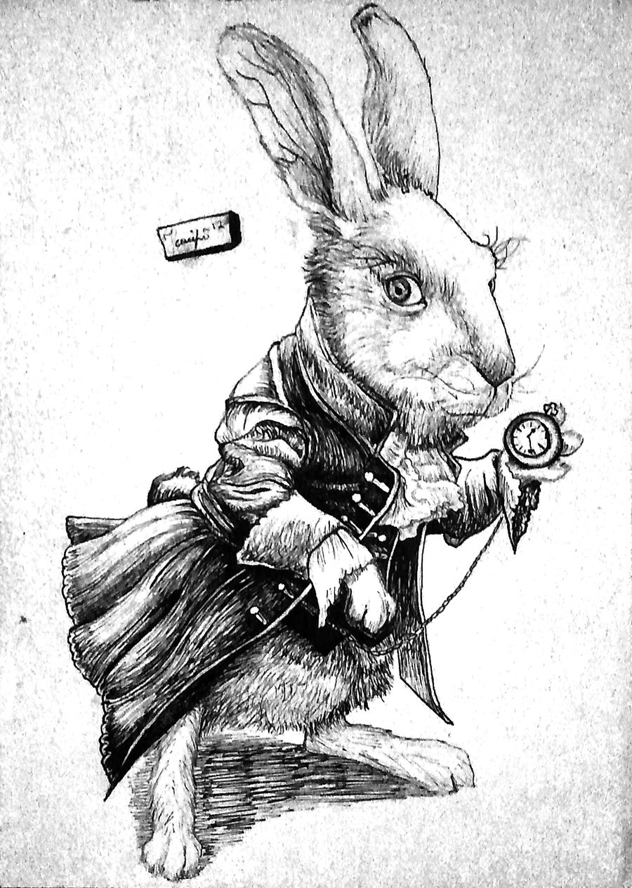 Drawn rabbit alice in wonderland Rabbit Concept this Through Rabbit