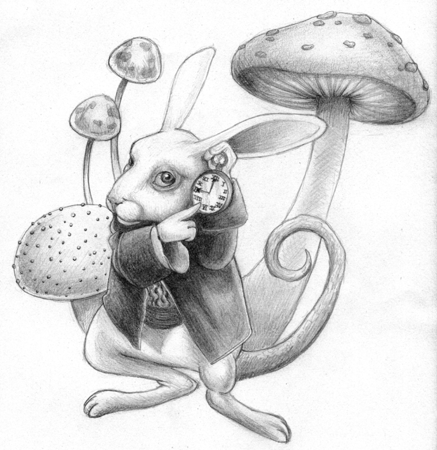 Drawn rabbid alice in wonderland Absolutely absolutely Rabbit DrawingWonderland it