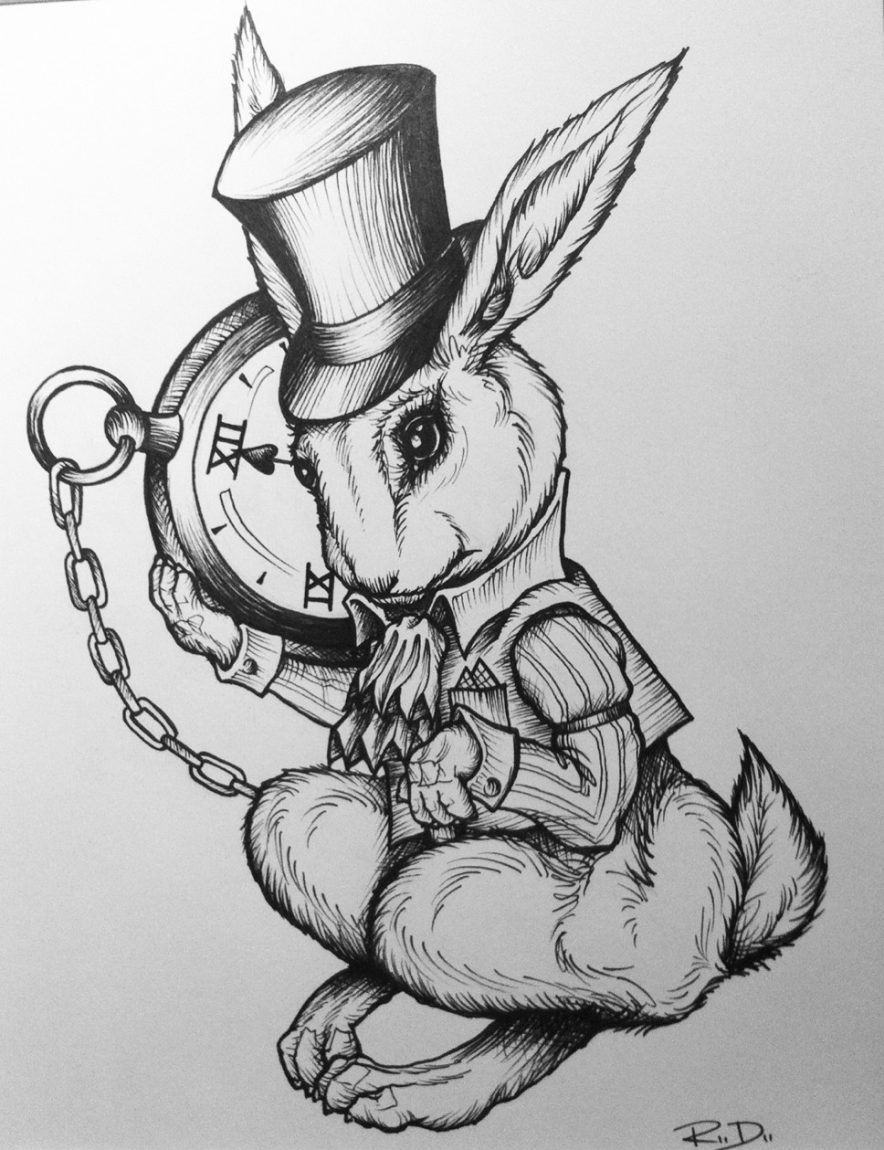 Drawn rabbid alice in wonderland  White Rabbit Alice illustration