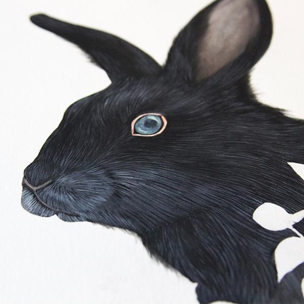 Drawn rabbit animal fur Fur on fur in Animals: