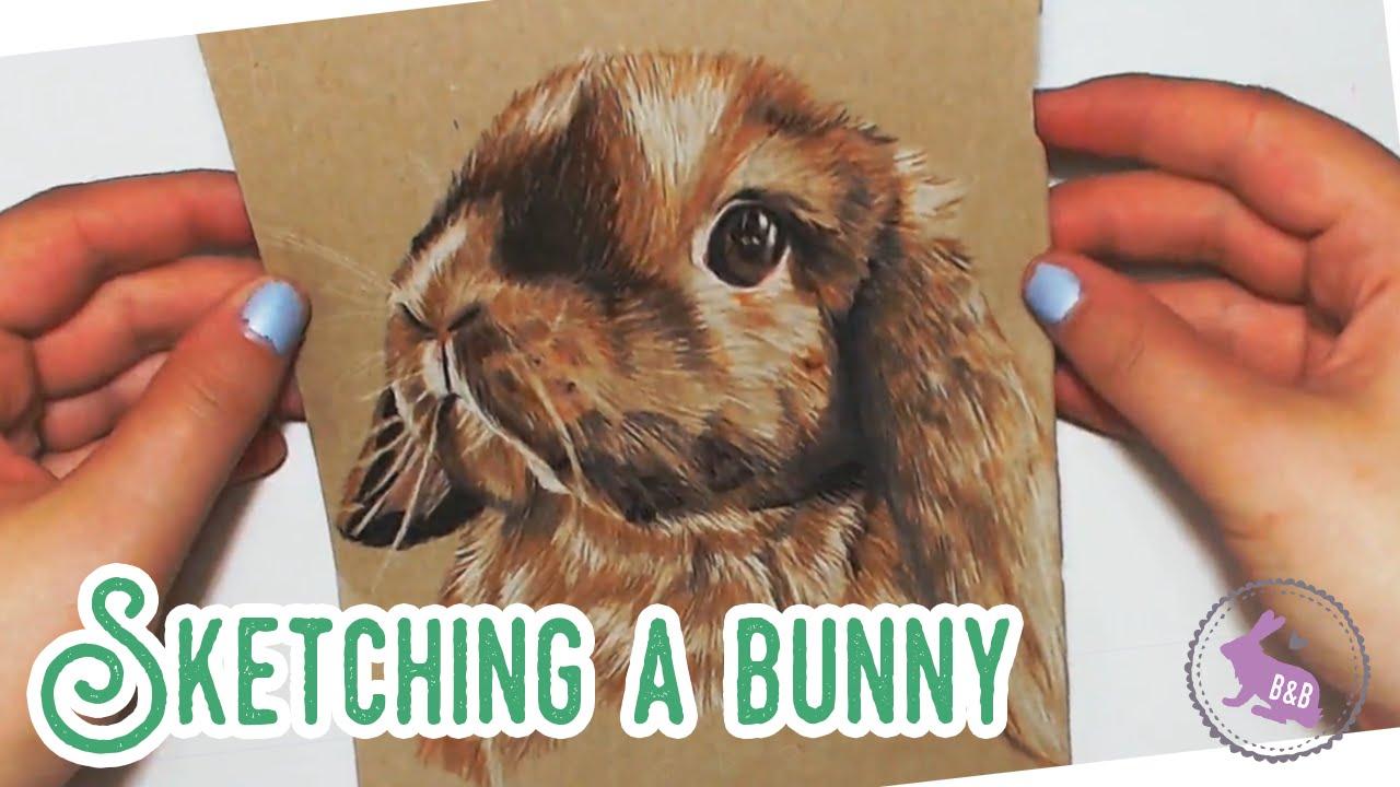 Drawn rabbit animal fur Animal Draw Bunny Animal Sketch