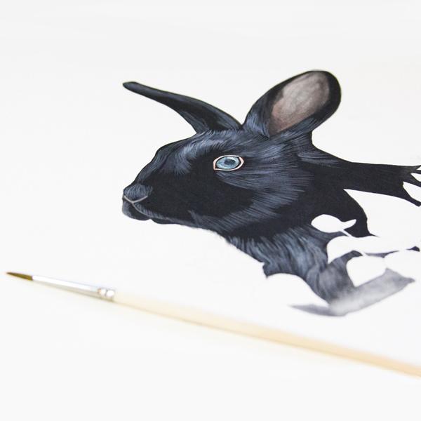 Drawn rabbit animal fur Painting create Painting Steps Fur